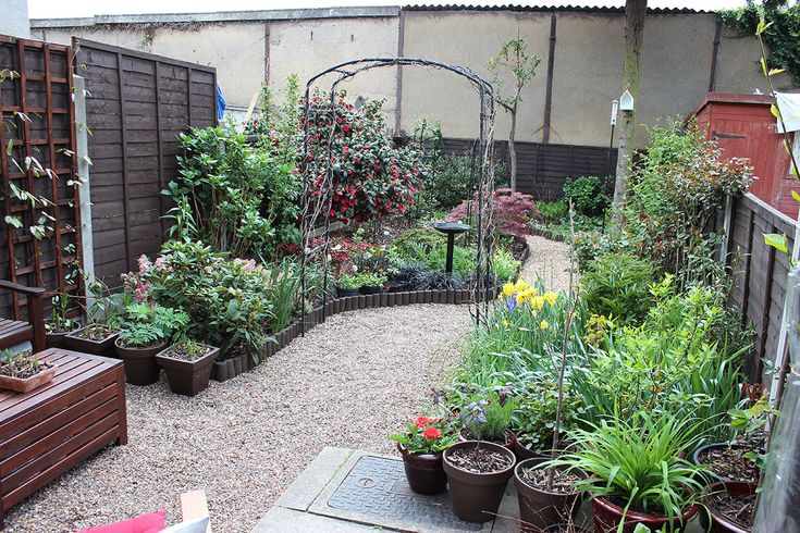 container gardening uk - Google Search | Small garden ...