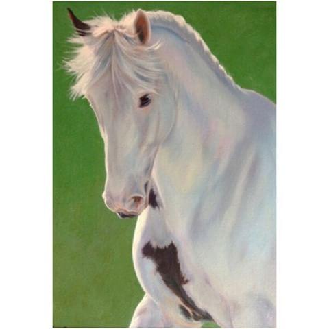 "A little oil study of ""Spotty"", an Irish bred who does Grand Prix #dressage . #whitehorse #hunterjumper #horsesofinstagram #equestrianstyle #dressur #pferde #cheval #caballo"