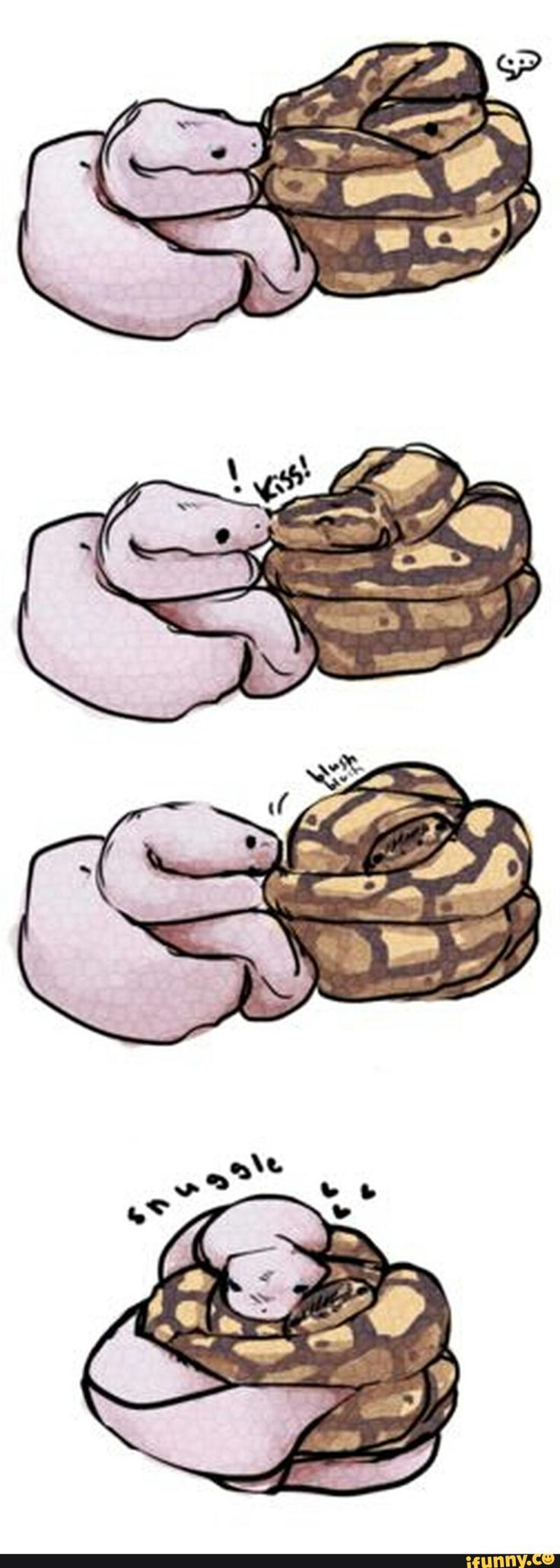 best animals images on pinterest snakes cool things and funny