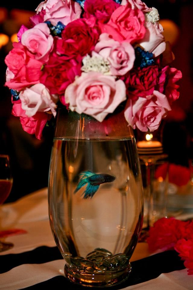 Beta swimming under flowers. Cool centerpiece idea!
