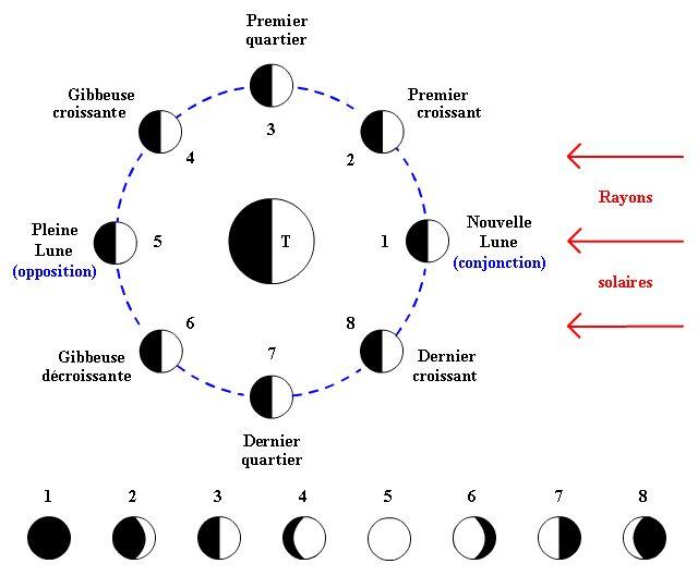 Les Phases De La Lune Vue De La Terre