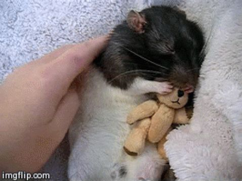 """Do not underestimate the importance of snuggling."" 