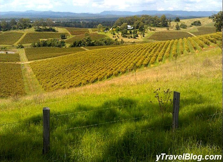 Hunter Valley, NSW, Australia