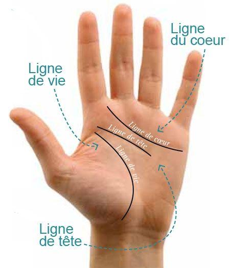 Chiromancie, lignes de la main