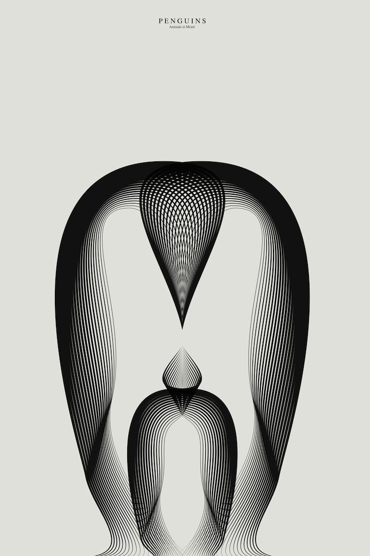 New Animals Drawn with Moiré Patterns by Andrea Minini posters and prints pattern illustration animals
