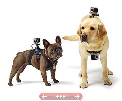 Chest And Back Mount Dog Or Pet Harness With Free J-Hook And Buckle Mount For GoPro Hero 4/ Go Pro Hero 3/3/2/1 Action Camera SJCAM Sj5000 Sj4000 Sport Cam Sony Camcorder #SonyActionCam