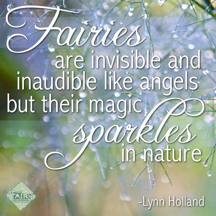 This quote is telling us that fairies might be invisible to us, but their magic is really powerful in nature around us.