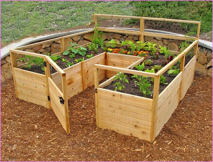 25 best ideas about raised vegetable gardens on pinterest for Above ground salon