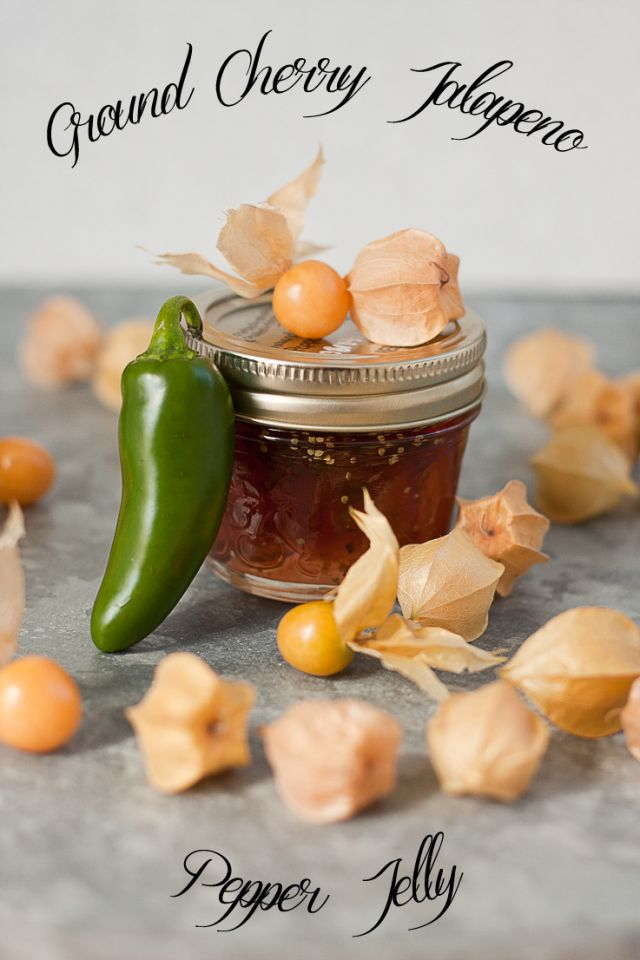 Sweet meets heat in this homegrown ground cherry jalapeno pepper jelly | www.pickytoplenty.com