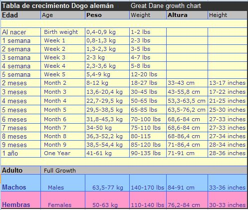 GREAT DANE GROWTH CHART / TABLA DE CRECIMIENTO DEL GRAN