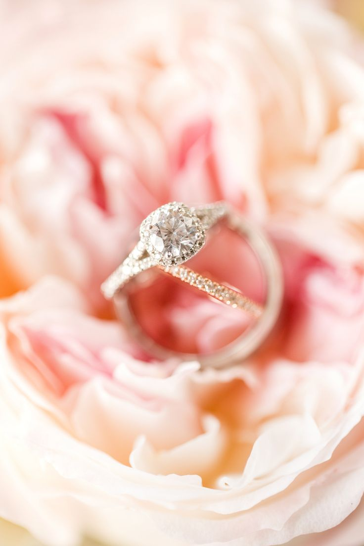 Best 46 Ring Shots images on Pinterest | Wedding pictures, Bridal ...
