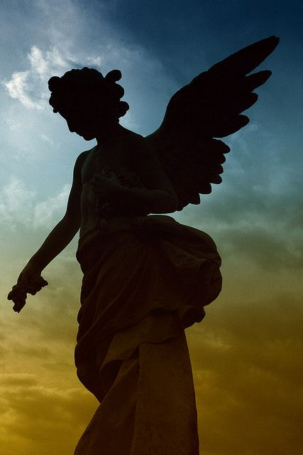 Cimitero Monumentale. Messina, Sicily, Italy. By Zakkarya. #angel, #silhouette.