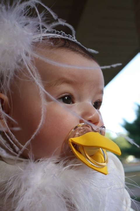 """@ Britt R- DH, ur """"fuzzy"""" needs this:) Too funny!!! Chicken pacifier! Holy cuteness!!"""