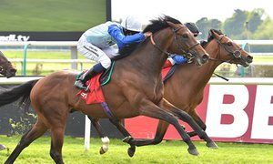 Humphrey Bogart may be cast in Derby role after Lingfield trial win