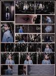 Scholarship photography exemplars - 2013 » NZQA