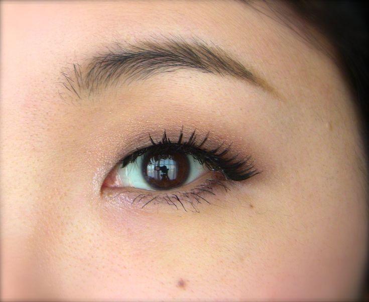 Basic Monolid Makeup for Beginners | ブラウン一重メイク 基本的・初心者用 - YouTube