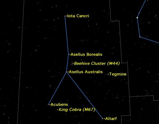 37 best Constellations Zodiac images on Pinterest