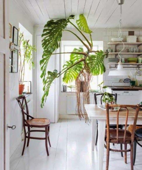 Inredning, trädgård och vardagsglimtar från mitt liv på landet i både lägenhet och båtsmanstorp.
