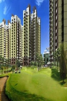 Amrapali Kingswood Greater Noida of west of Noida Extension is very well connected to main part of the city. The close vicinity places are sector 120, Sai Mandir, Fortis Hospital, DND Flyway and sector 18 Atta Markets.
