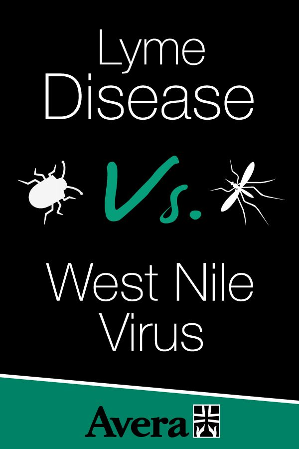 Summer is a time to enjoy being outdoors. Summer is also a time when the bugs come out, and some of them can transmit diseases to humans. Learn about Lyme Disease and West Nile Virus from Dr. Samuel Schimelpfenig to live better and live balanced.