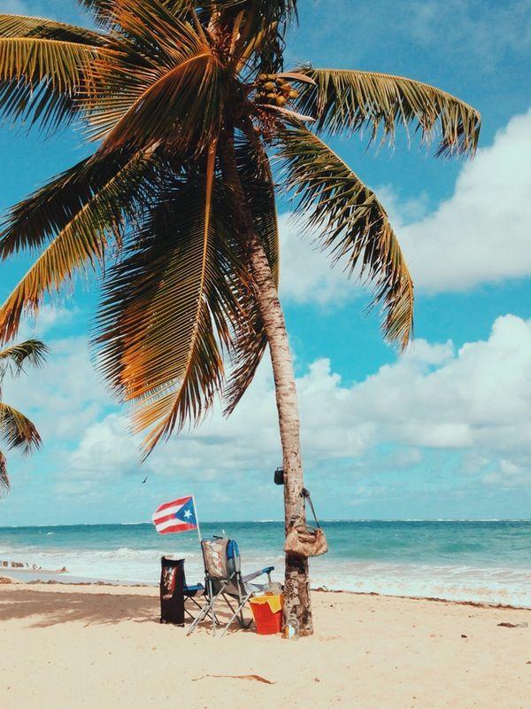 casa tropical | 13am | VSCO Grid®