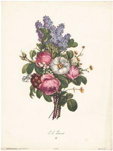 Vintage Prevost floral prints, roses, lilacs, poppy, Sidney Z Luca