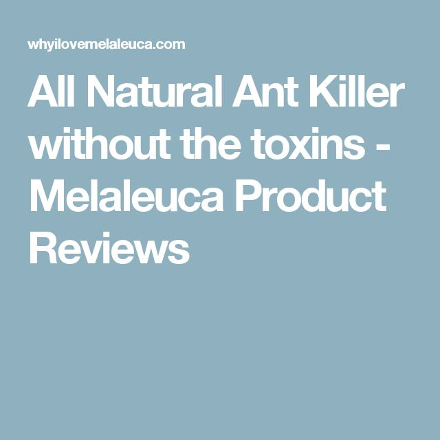 All Natural Ant Killer without the toxins - Melaleuca Product Reviews