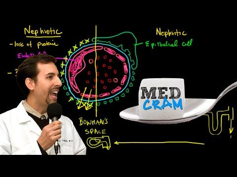 Nephrotic vs Nephritic Syndrome Explained Clearly - YouTube