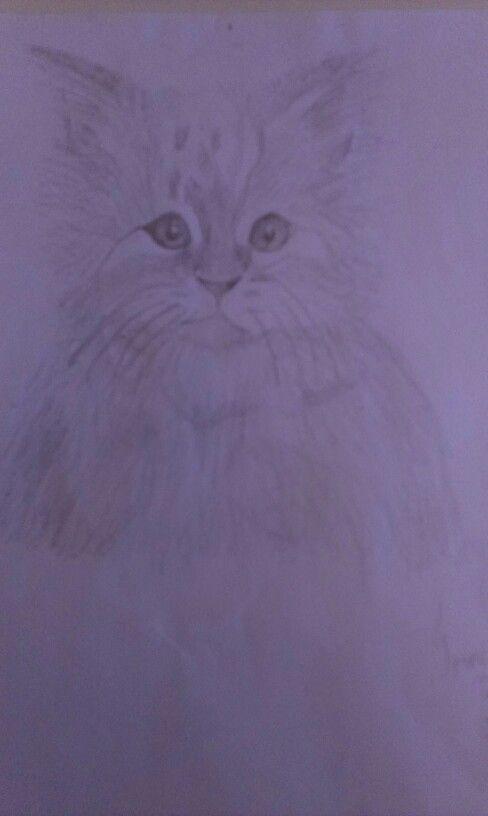 En tegnig af en kat