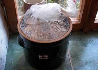 Topf mit Wasser-Plastikbeutel luftdicht verschlossen.