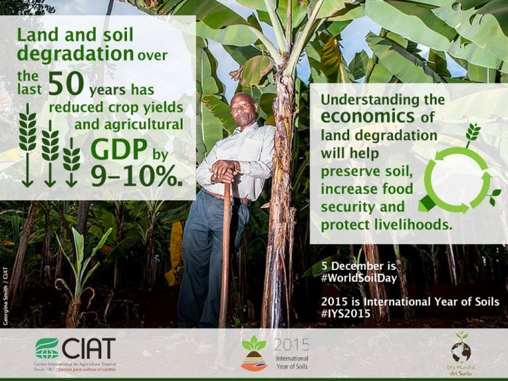 #WorldSoilDay /Land and soil degradation has reduced crop yields and agricultural GDP