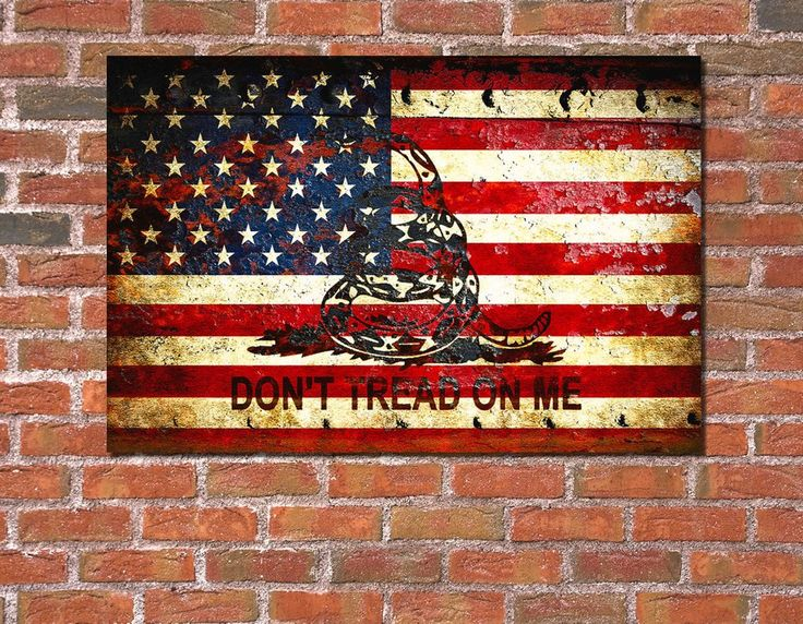 American Flag And Viper On Rusted Metal Door - Don't Tread On Me!