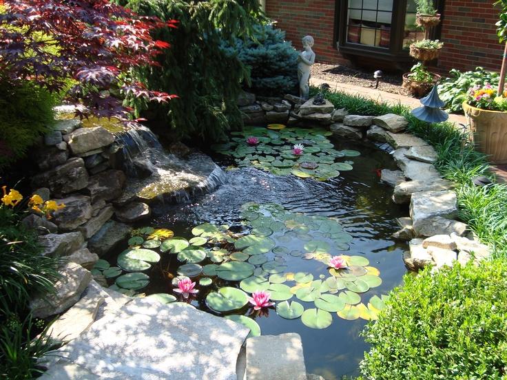 Best 25 Fish Ponds Ideas On Pinterest Pond Kits Koi Pond Kits And Pond Ideas