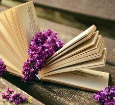 11 книг для хорошего настроения