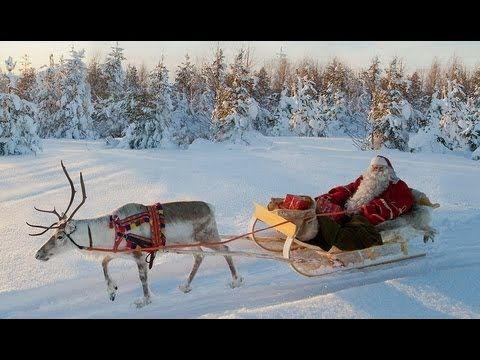 Père Noël et renne en Laponie