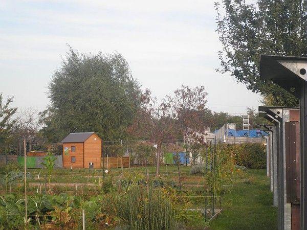 Jardins partagés du Parc du Chemin de l'Ile, Nanterre, 2011 / ©Pôle images-AgroParisTech