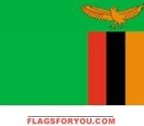 2' x 3' Zambia flag