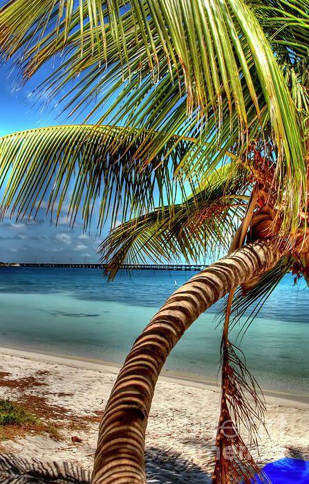 Island life Bahia Honda State Park - Big Pine Keys, Florida. Photo by Bibhash Chaudhuri/White Shadow Photography.