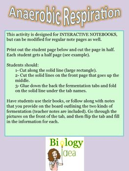 17 best ideas about anaerobic respiration on pinterest biochemistry cell biology and mitosis. Black Bedroom Furniture Sets. Home Design Ideas