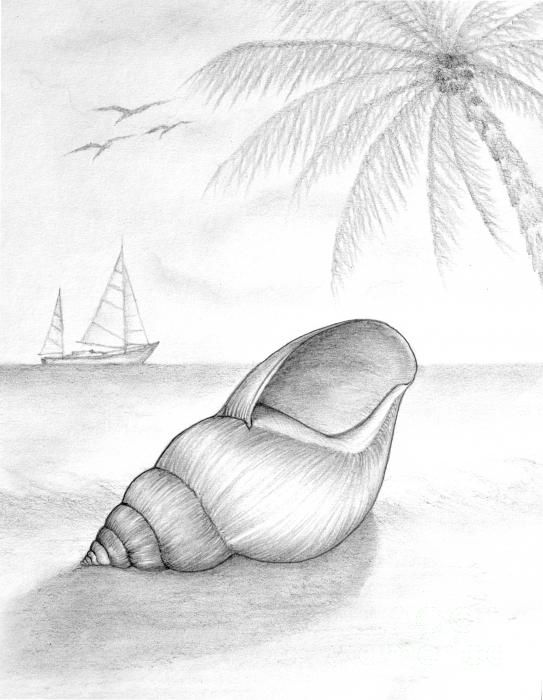 Portrait mastery drawing drawing pencil drawing of beach scene by evelyn sichrovsky discover the secrets of drawing realistic pencil portraits