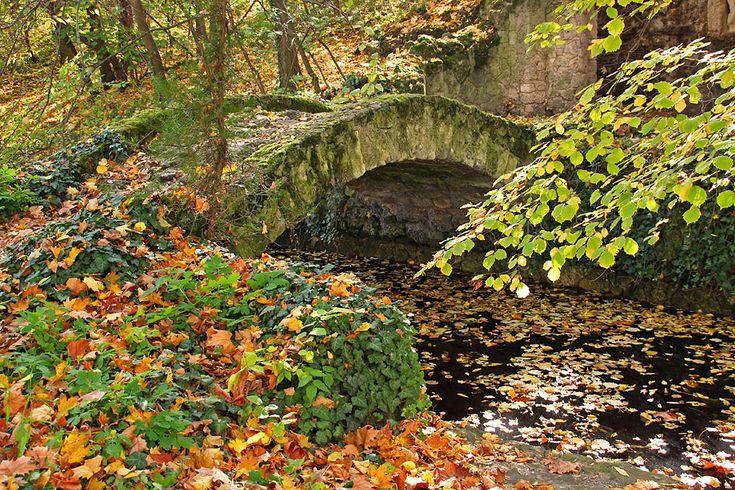 Bridge That Leads to Autumn by AgiVega - Near the Cseke Lake, Tata, Hungary.