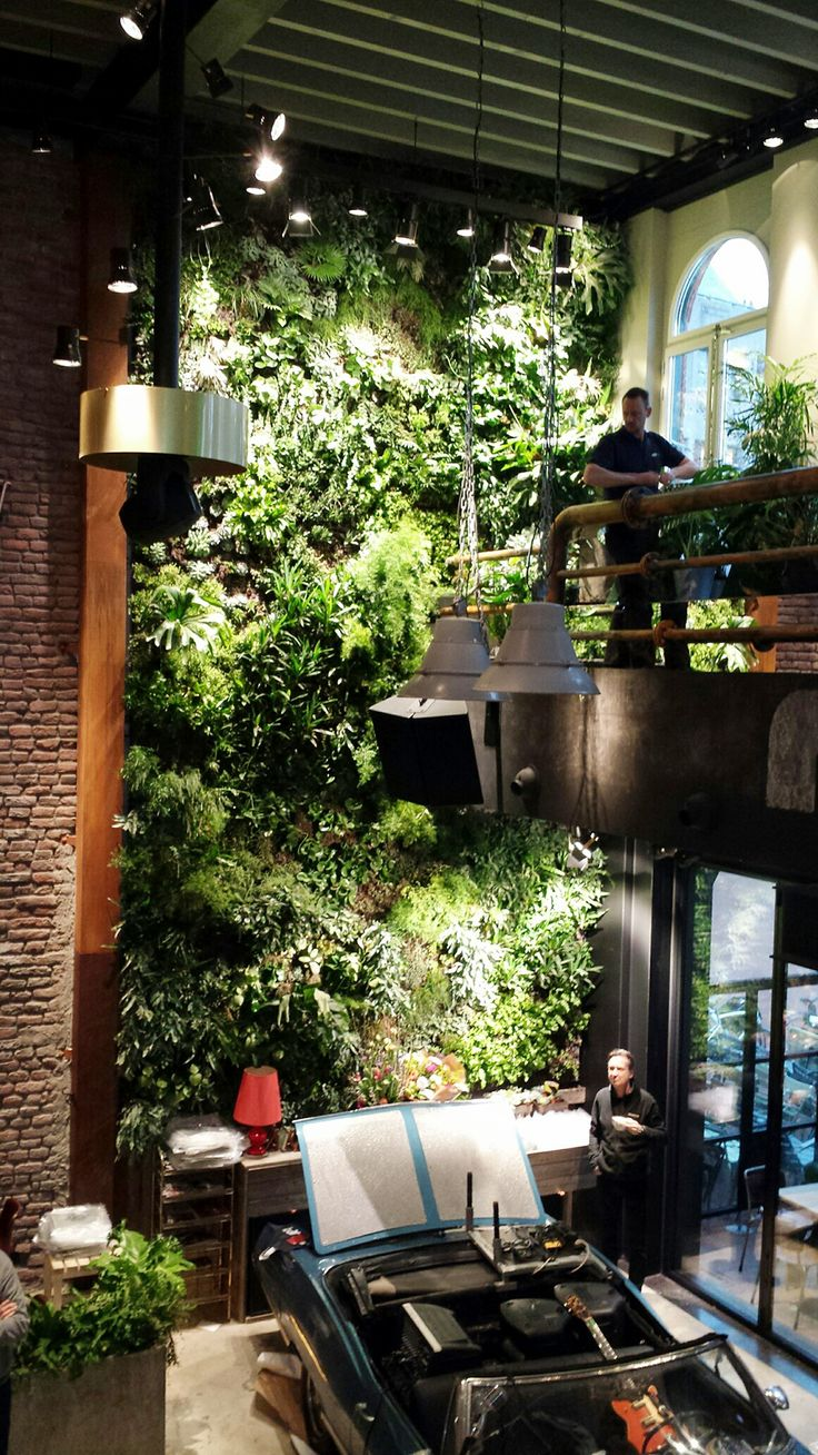 Vertical garden design with orchids space saving backyard landscaping - Grand Caf Eindhoven Vertical Gardens