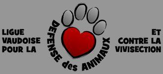 #logo LVDA 2015 #graphic