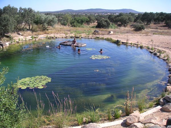 a swimming pond that looks like it has always been there by Bio Piscinas