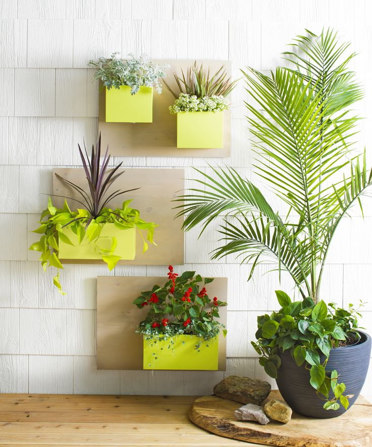 Put plants on display with modular hanging planters. Mix an assortment of wood boards and boxes to make a vertical or horizontal garden for your space.
