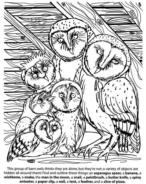 25 Best Ideas About Dover Publications Auf Pinterest