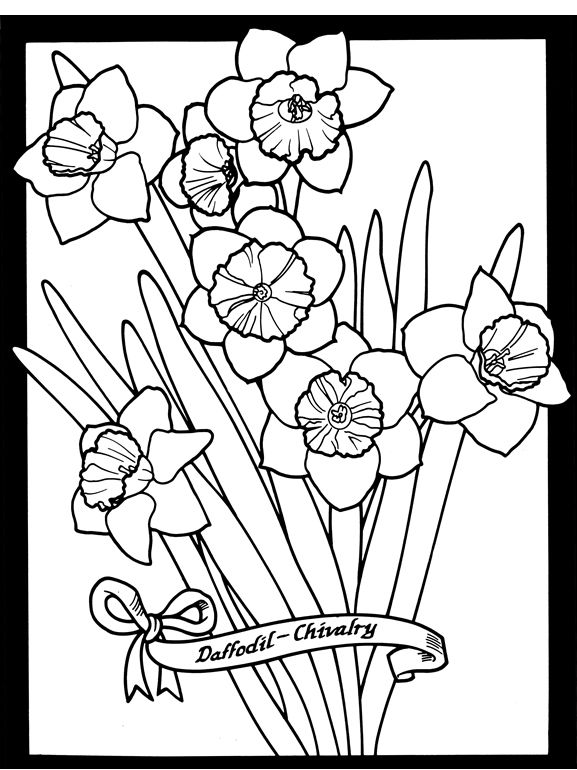 the language of flowers stained glass coloring book dover publications - Pittsburgh Pirates Coloring Pages