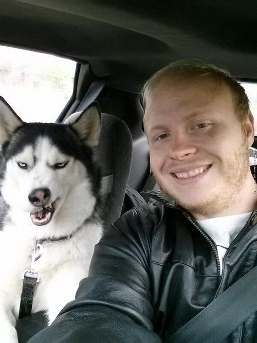 This dog's attempt at actually looking good in a selfie. | The 61 Most Awkward Moments In The History Of Dogs
