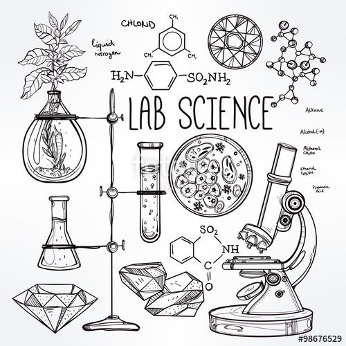 Vector: Hand drawn science lab icons sketch set .