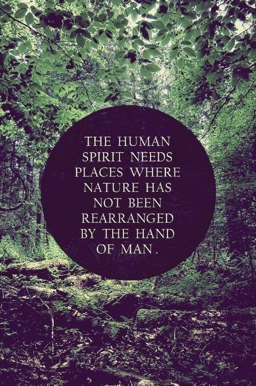 The Human Spirit Needs Places Where Nature Has Not Been Rearranged By The Hand of Man